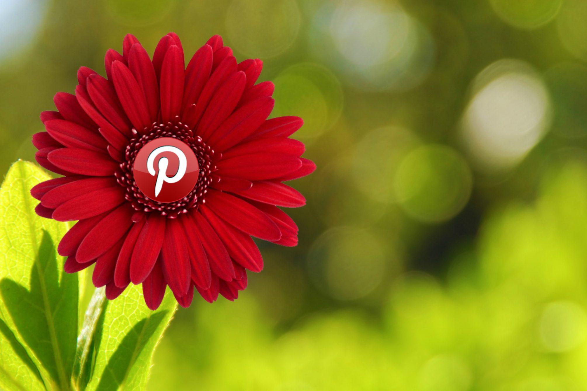 Pinterest © mkhmarketing